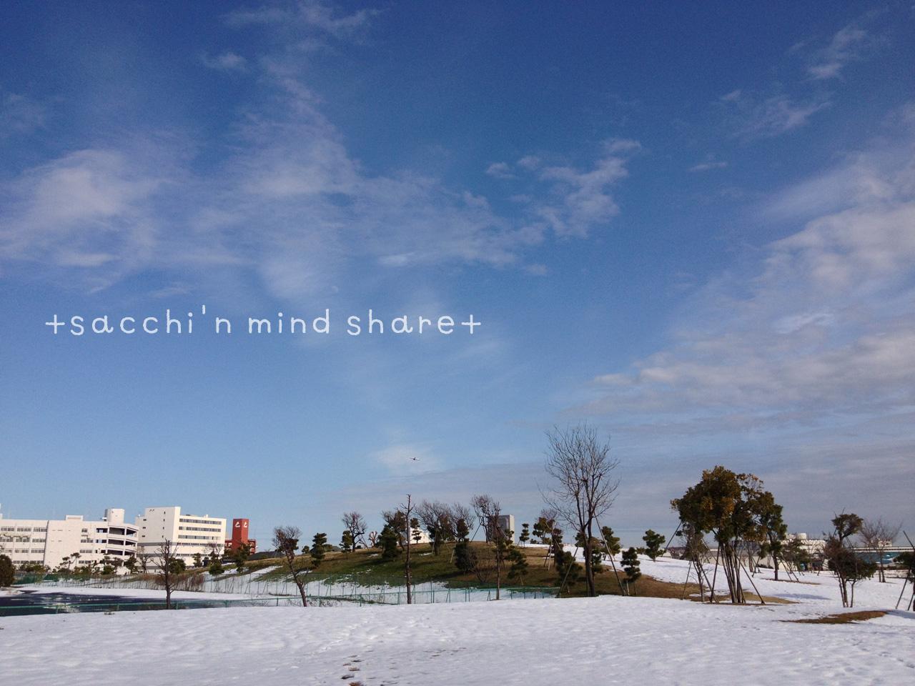 snowday140209-13