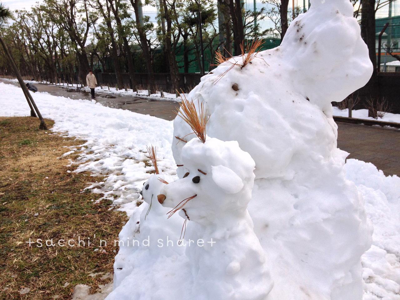 snowday140209-21