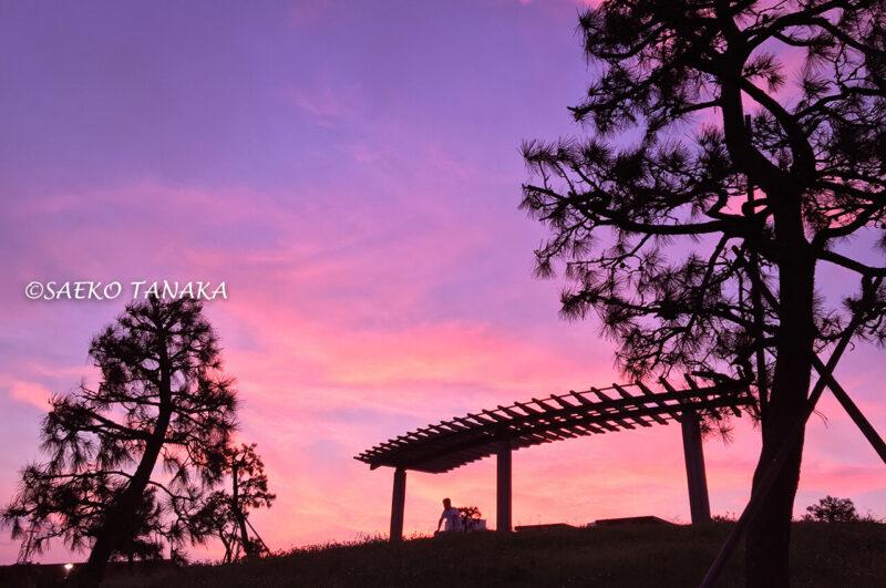 真夏の雨上がりの夕方に広がる、鮮やかな夕焼け空が美しい、東京城南エリアの東京都大田区大森にある「大森ふるさとの浜辺公園」