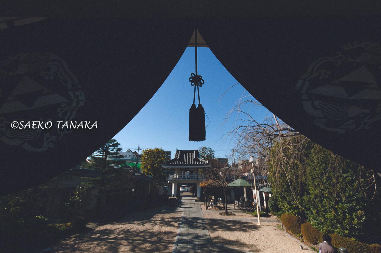 大田区大森の厳正寺