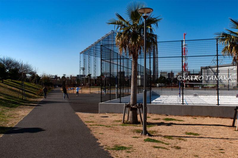 大森ふるさとの浜辺公園のビーチバレー場とバスケットコートとフットサル場