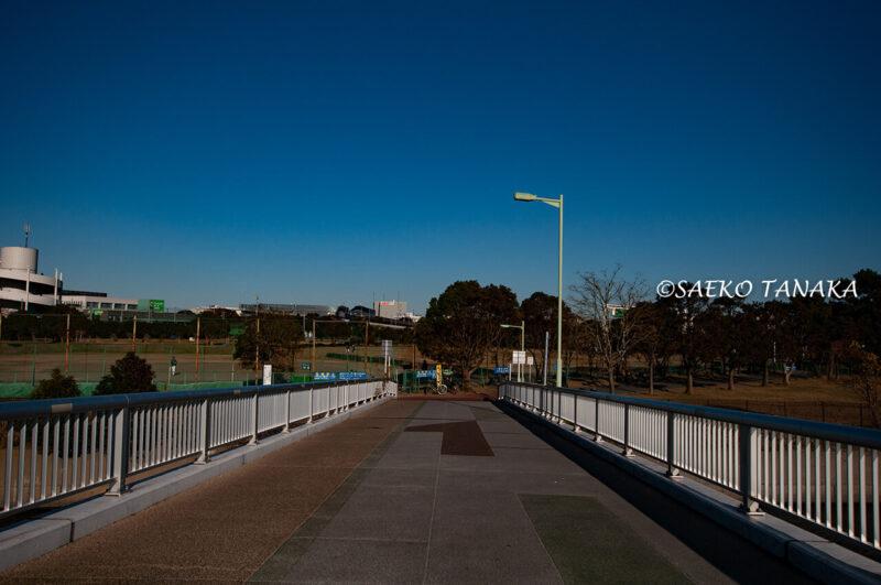 昭和島の見晴らしばしと昭和島運動場