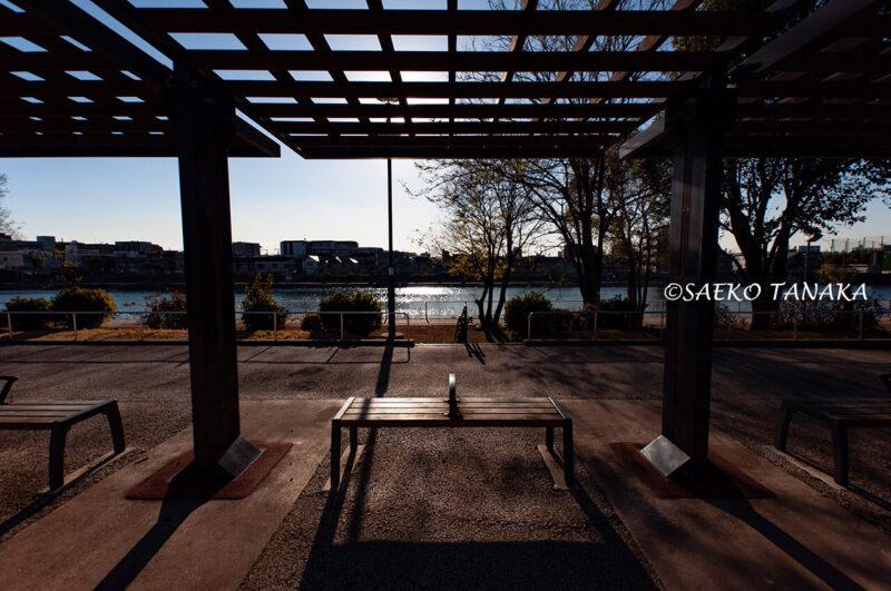 昭和島の昭和島南緑道公園