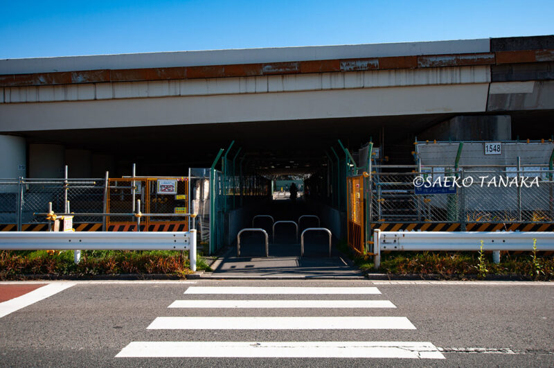 昭和島の首都高速1号羽田線