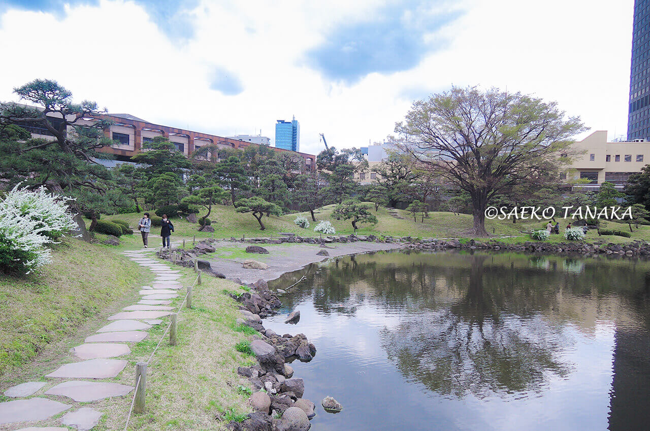 桜満開の「旧芝離宮恩賜庭園」