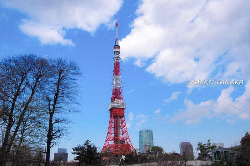 桜満開の「芝公園」から見た東京タワー