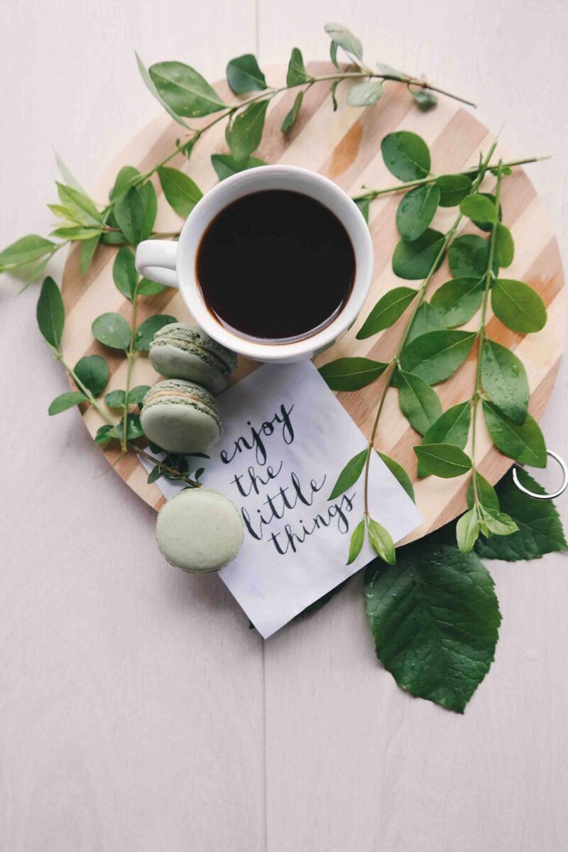 愛用のテーブルと観葉植物とともにコーヒーブレイク