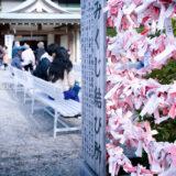 満開の紅梅白梅が楽しめる東京の梅名所、亀戸天神社のおみくじ