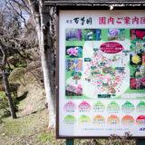 満開の紅梅白梅が楽しめる東京の梅名所、京王百草園の園内案内図(年間花見図)