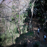満開の紅梅白梅が楽しめる東京の梅名所、京王百草園の見晴台