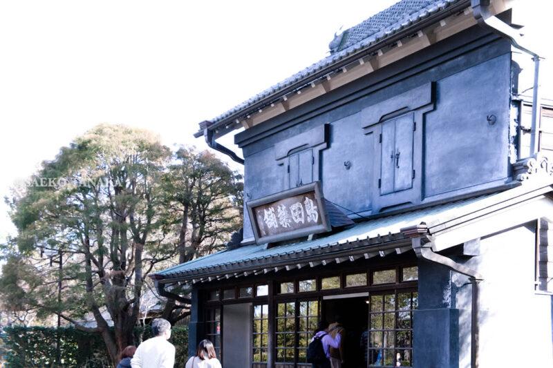 満開の紅梅白梅が楽しめる東京の梅名所、府中市郷土の森博物館の敷地内にある旧田中家住宅向かいの旧島田家住宅