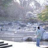 満開の紅梅白梅が楽しめる東京の梅名所、府中市郷土の森博物館の敷地内にある水遊びの池