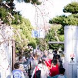 満開の紅梅白梅が楽しめる東京の梅名所、府中市郷土の森博物館の正門出口前の梅
