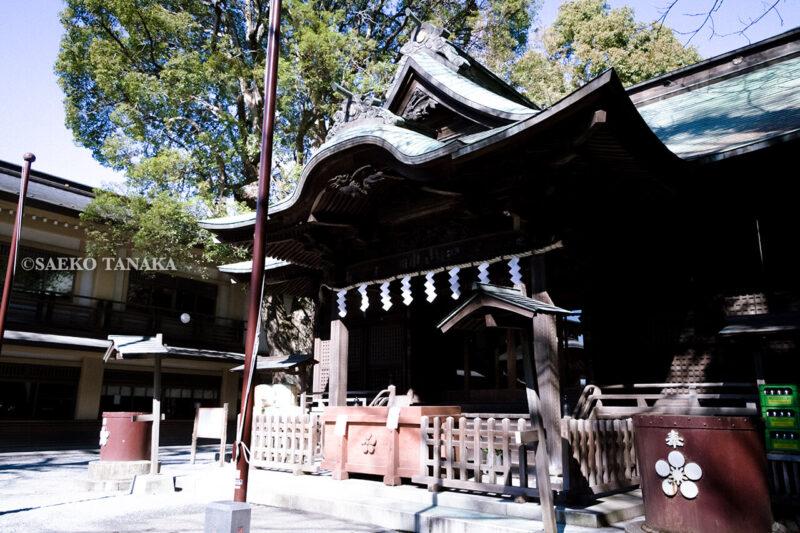 満開の紅梅白梅が楽しめる東京の梅名所、谷保天満宮にある拝殿