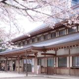 満開のソメイヨシノなどが楽しめる東京の桜名所、靖国神社/靖國神社の参集殿