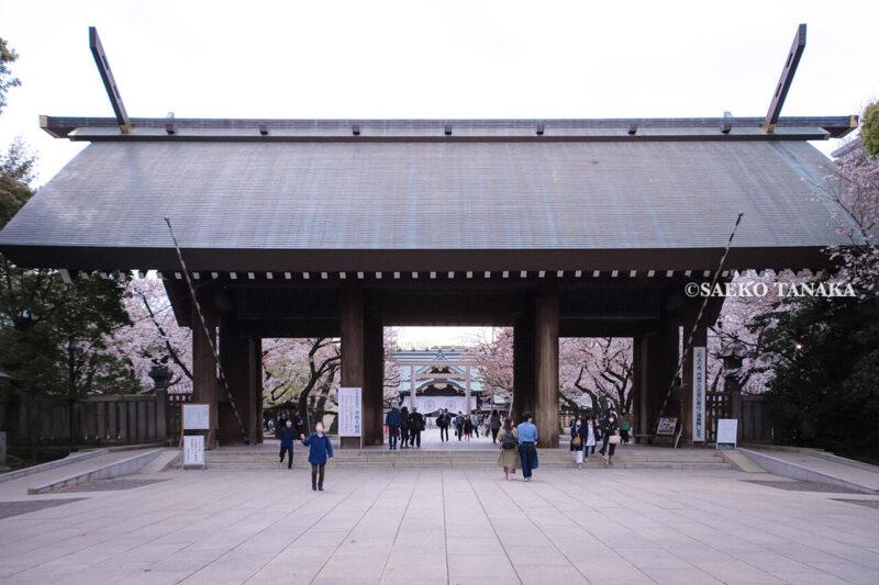 満開のソメイヨシノなどが楽しめる東京の桜名所、靖国神社/靖國神社の神門と拝殿