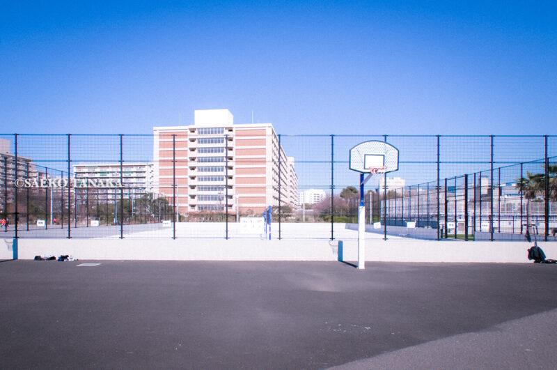 満開のソメイヨシノなどが楽しめる東京の桜名所、大森ふるさとの浜辺公園にあるバスケットゴールとコート