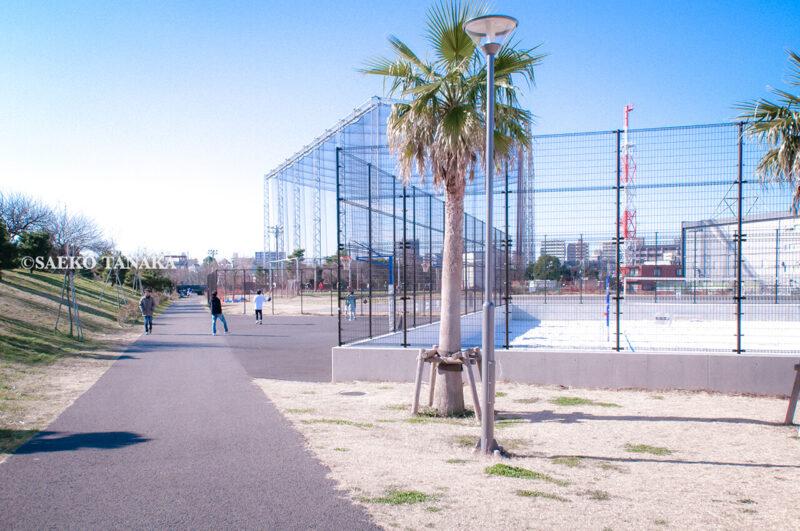 満開のソメイヨシノなどが楽しめる東京の桜名所、大森ふるさとの浜辺公園にあるビーチバレー場とバスケットゴール・コートと、3on3を楽しむ男の子たち