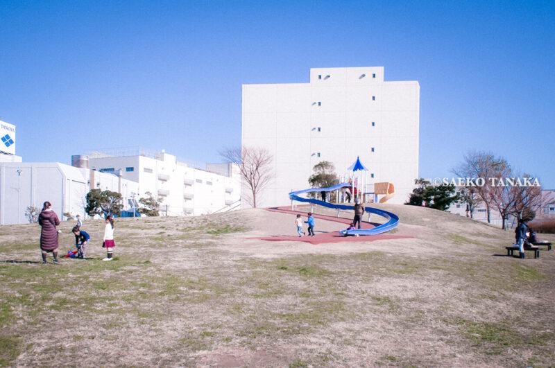 満開のソメイヨシノなどが楽しめる東京の桜名所、大森ふるさとの浜辺公園にある、ふるさとの広場のローラースライダー(すべり台)で遊ぶ幼稚園児・保育園児・小学生と家族連れファミリー