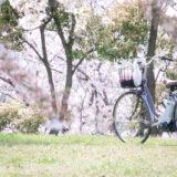 満開のソメイヨシノなどが楽しめる東京の桜名所、大森ふるさとの浜辺公園にある芝生(グリーン)エリアに咲くソメイヨシノと、散策路に置かれた自転車