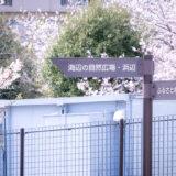 満開のソメイヨシノなどが楽しめる東京の桜名所、大森ふるさとの浜辺公園にある浜辺橋の先の園内案内標識