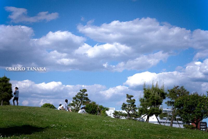 清々しい新緑・芝生と白い砂浜・青い海が気持ちよく、5月の青空と花木が映える、都内初の海浜公園「大森ふるさとの浜辺公園」