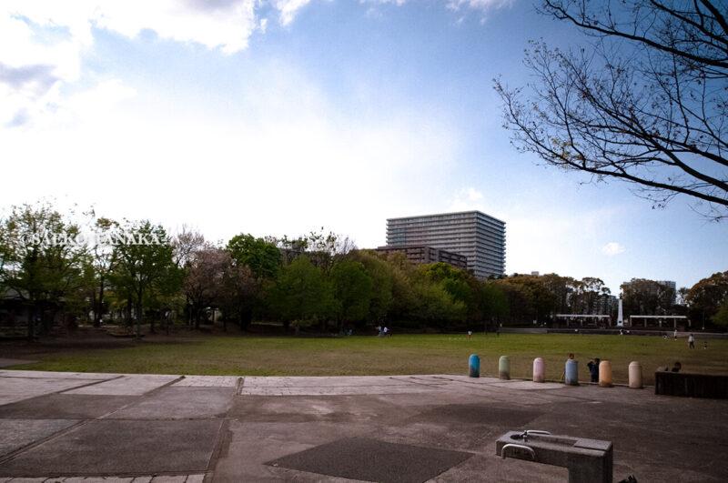 清々しい新緑・芝生とひょうたん池・平和の広場が気持ちよく、5月の青空と花木が映える、フィールドアスレチックコースや各種スポーツ施設併設の「平和の森公園」