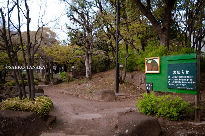 清々しい新緑・芝生とカリヨン・噴水のある水景広場が気持ちよく、5月の青空と花木が映える、バーベキューができるキャンプ場や野球場・プール併設の「平和島公園」