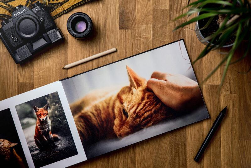 読みたくないブログとしてPV減少の原因とも酷評される会話形式の吹き出しの導入を嫌っていたからこそ、ブログに会話形式の吹き出しを効果的に導入するためにキャラクターとなる猫をカメラで撮影しフォトプリントして研究